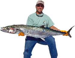 Check our our FREE online Fishing Shrimping Forum