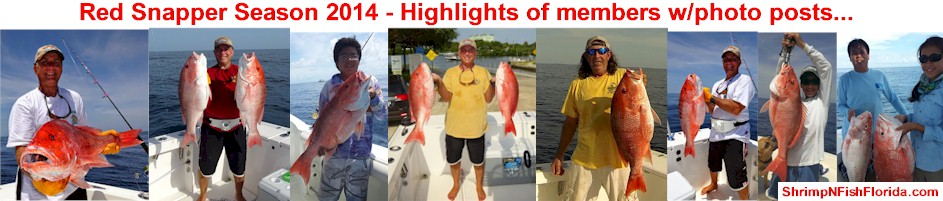 Daily Shrimping AND Fishing Reports Updated daily